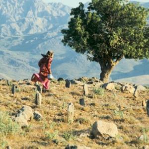 Kiarostami encerra o Vão Livre deste ano