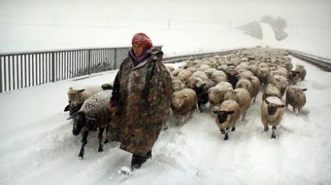 Nômades do Inverno